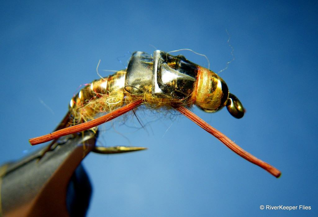 McPhail's Golden Stonefly Nymph - Variant | www.johnkreft.com