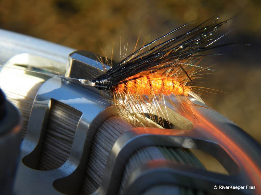October Caddis|www.johnkreft.com
