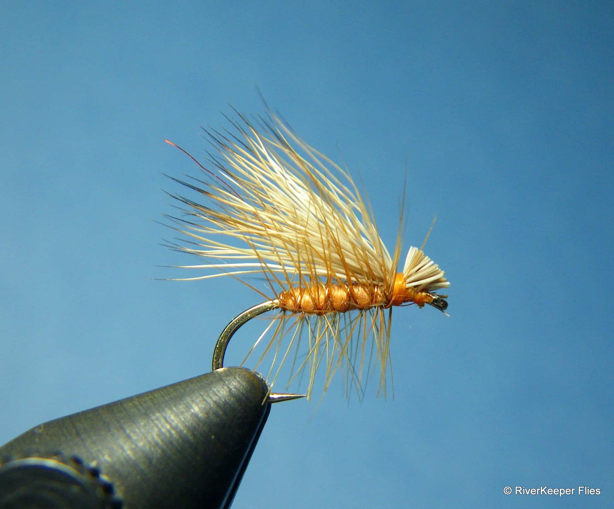 Elk Hair Caddis|www.johnkreft.com