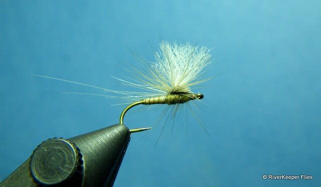 Harrops Callibaetis Paraspinner| www.johnkreft.com
