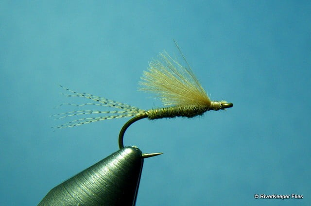 RiverKeeper Callibaetis Emerger | www.johnkreft.com