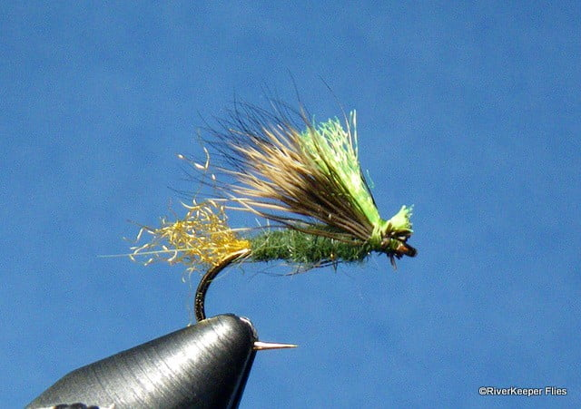 X Caddis | www.johnkreft.com