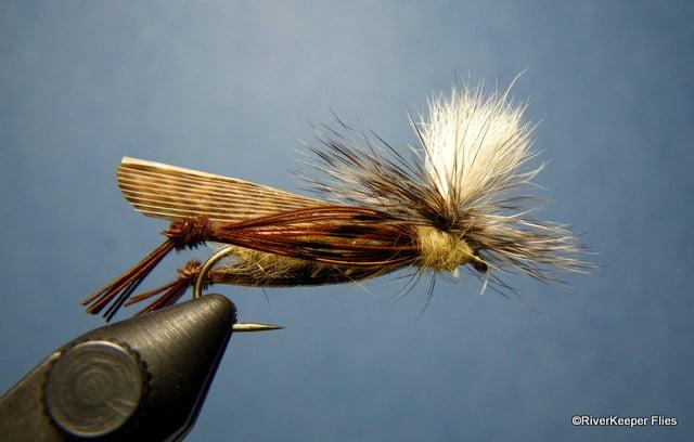 Schroeders Parachute Hopper | www.johnkreft.com