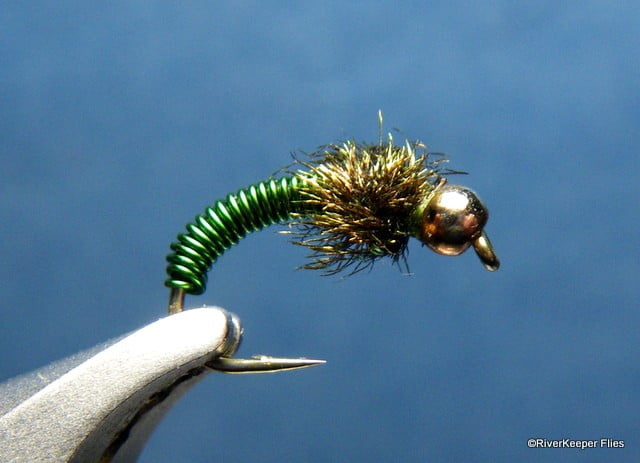 Metallic Caddis | www.johnkreft.com