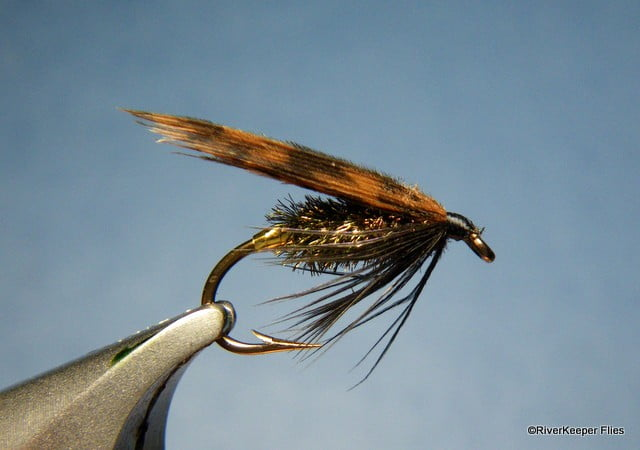 Alder Fly | www.johnkreft.com