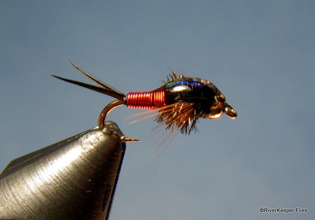 Copper John Rainbows