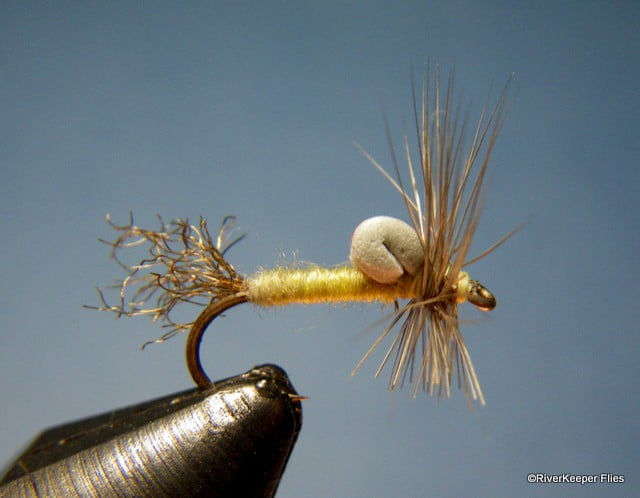 Pmd Foam Emerger