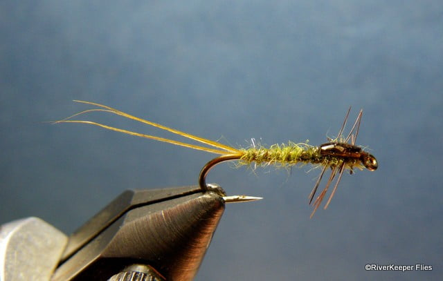 Janssen Damsel Nymph | www.johnkreft.com