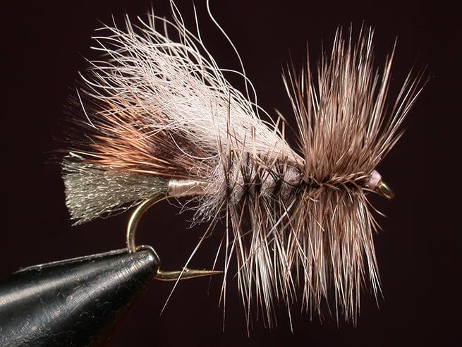 Lady Heather Double Wing | www.johnkreft.com