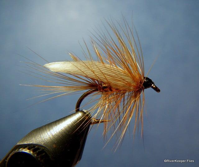 Wickhams Fancy | www.johnkreft.com