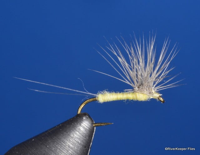 Quigleys PMD Hackle Stacker | www.johnkreft.com