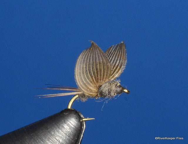 Sidewinder No-Hackle | www.johnkreft.com
