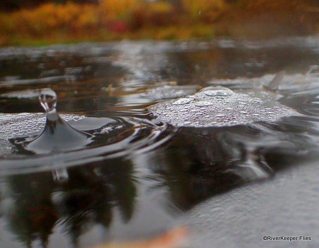 Raindrop | www.johnkreft.com