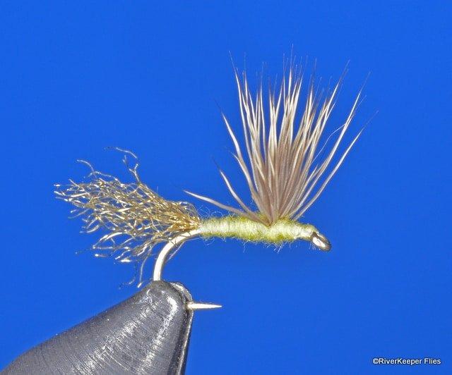 Sparkle Dun PMD   www.johnkreft.com