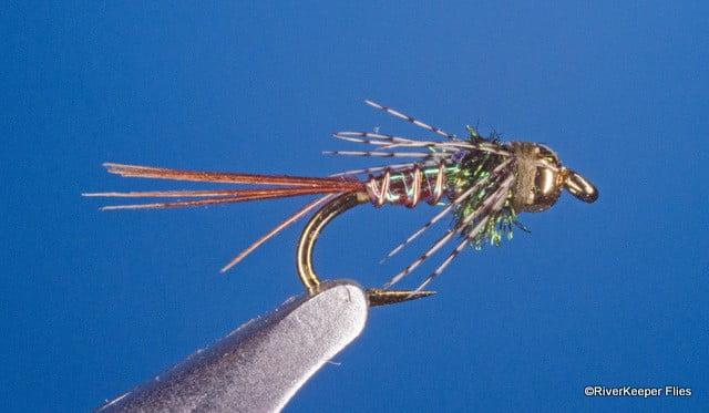 Lightning Bug | www.johnkreft.com