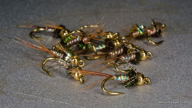Lightning Bugs   www.johnkreft.com
