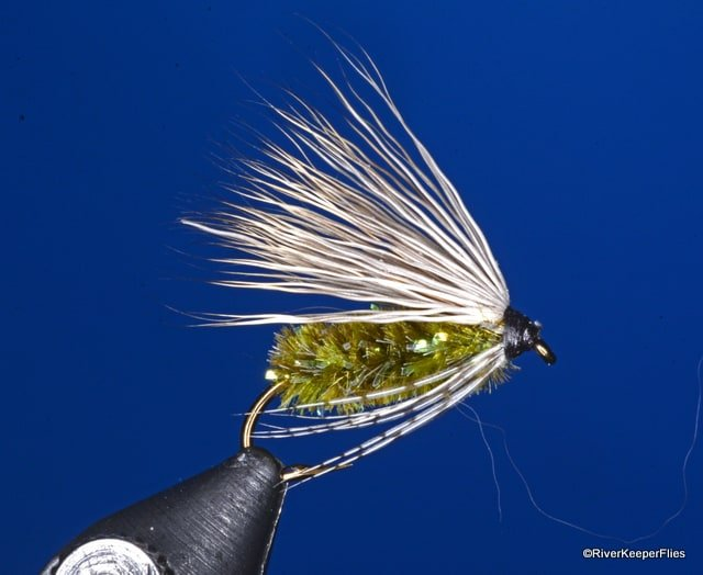McKenzie Caddis Wet Fly | www.johnkreft.com