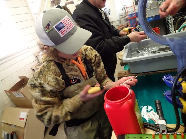 Tagging Fish | www.johnkreft.com