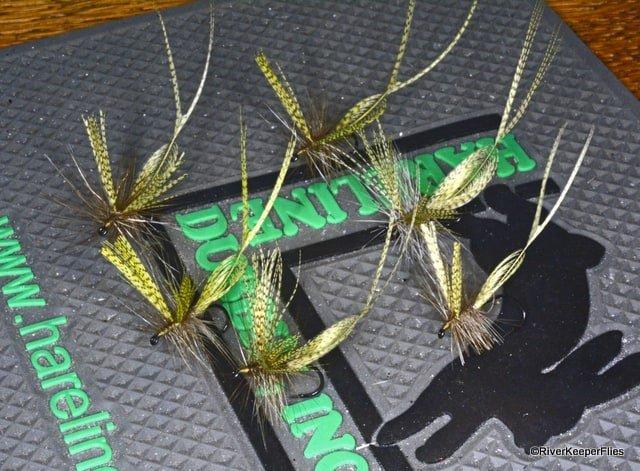 Hatchmaster Green Drake Flies | www.johnkreft.com