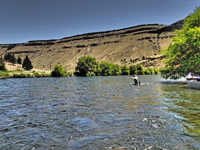 Fishing the Lower Deschutes -