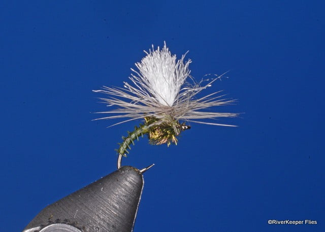 BWO Klinkhamer Variant | www.johnkreft.com