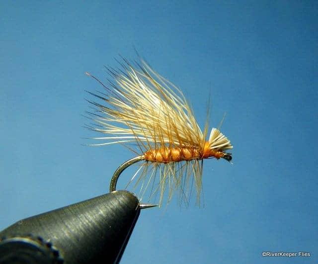 Elk Hair Caddis.JPG