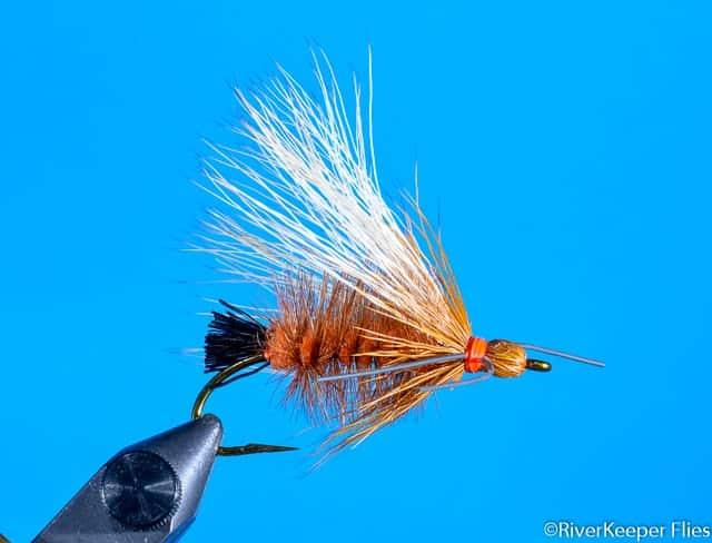 Jacklins Salmonfly