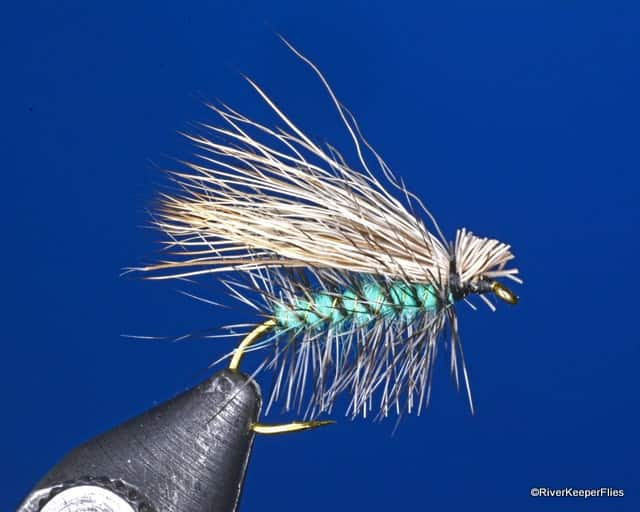 McKenzie Caddis Dry Fly