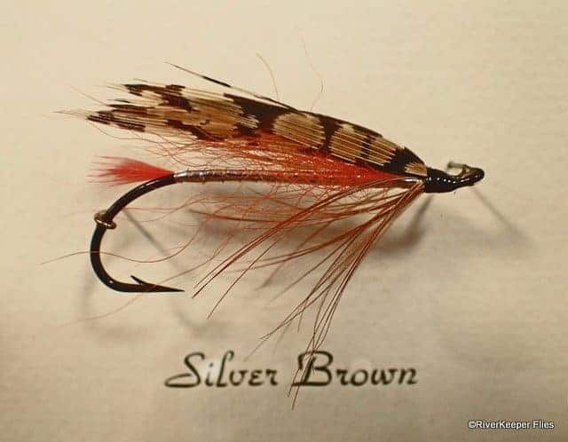 Silver Brown