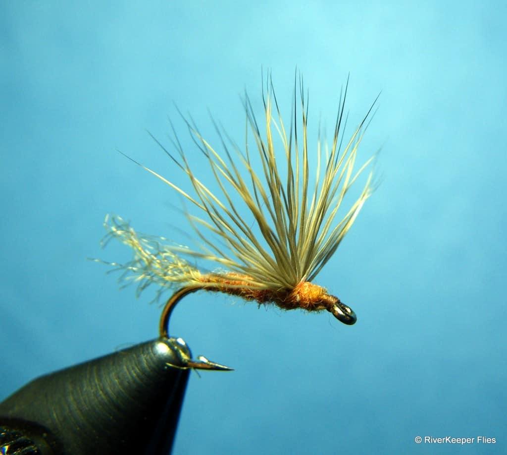 Sparkle Dun - March Brown|www.johnkreft.com