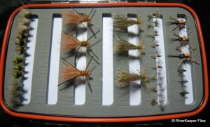 New to Fly Fishing? What Flies Should I Use?
