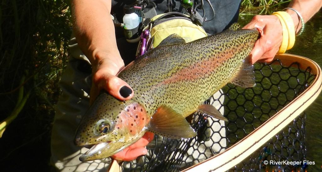 Metolius Rainbow|www.johnkreft.com