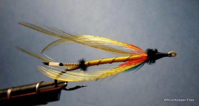 Golden Butterfly   www.johnkreft.com