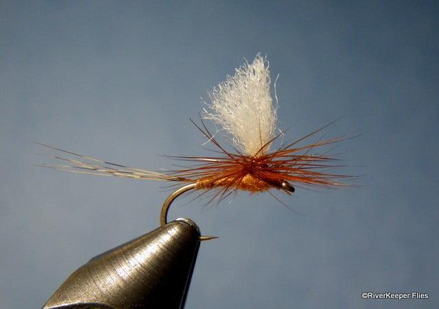 March Brown Parachute | www.johnkreft.com
