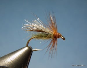 LaFontaine Diving Caddis