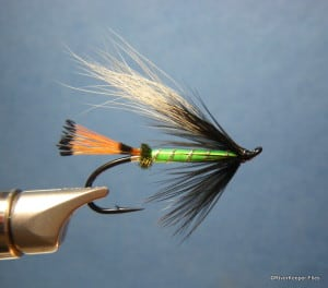 Tying Flies with Purpose