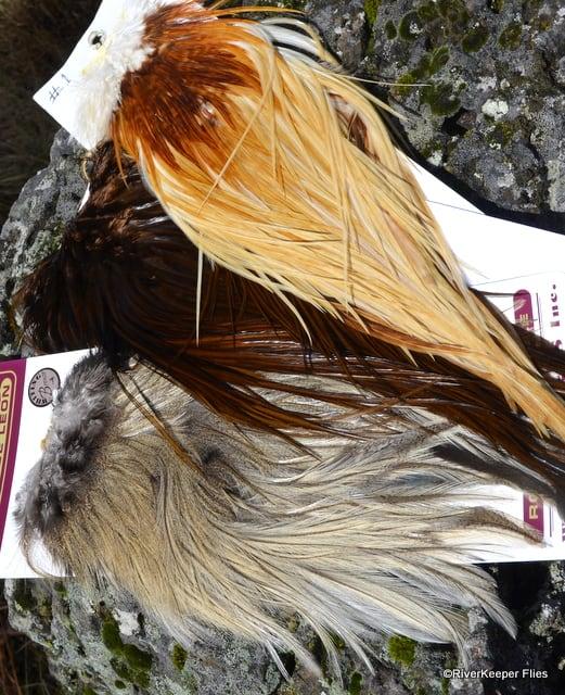 Feathers | www.johnkreft.com