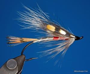 Jungle Dragon Steelhead Fly