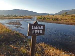 Montana Road Trip – Lamar River and Slough Creek
