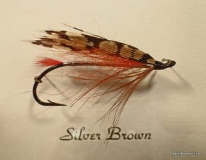 Silver Brown – TBT