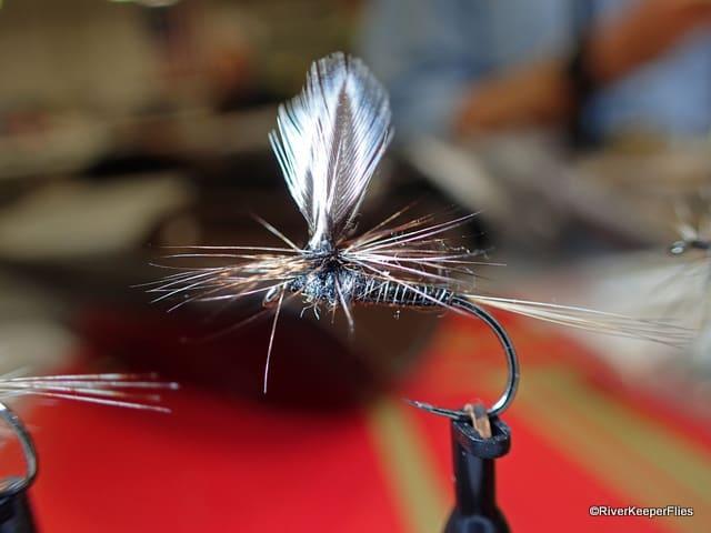 Chris Williams Parachute | www.johnkreft.com