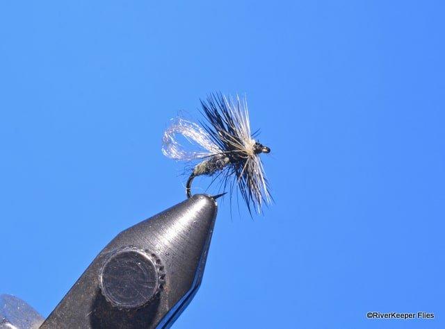 LaFontaine EZ2C Midge | www.johnkreft.com