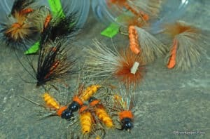 Ready for October Caddis?