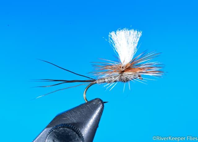 Parachute Adams | www.johnkreft.com