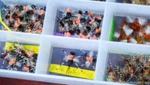 Effective Terrestrial Fly Patterns