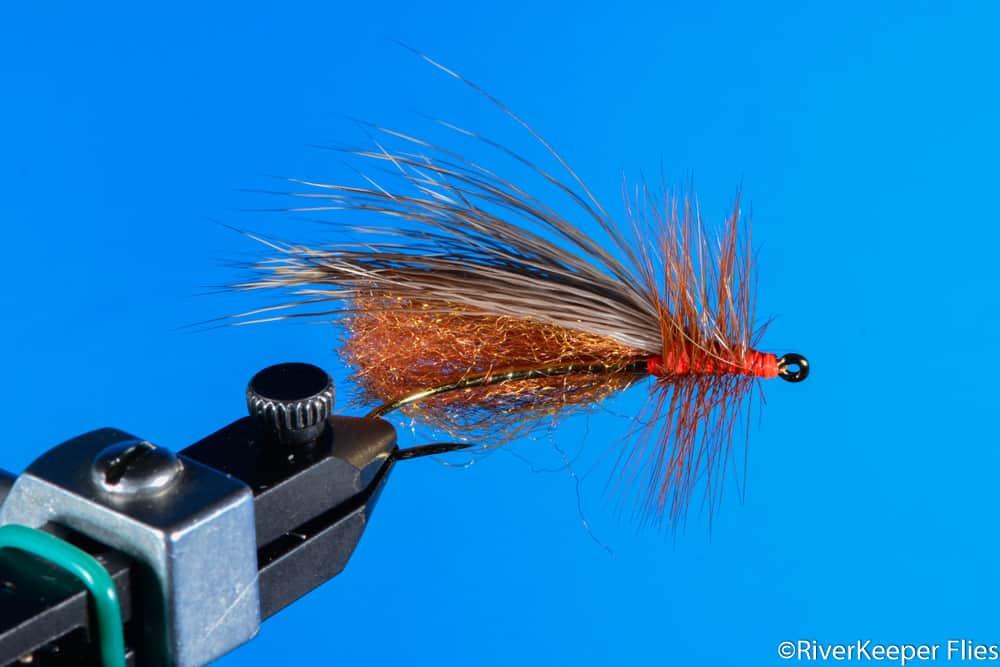 Clark's Stone - Salmonfly - Bottom View | www.johnkreft.com
