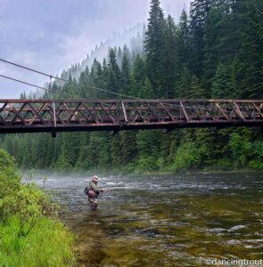 2020 Kelly Creek and NF Clearwater River Fly Fishing