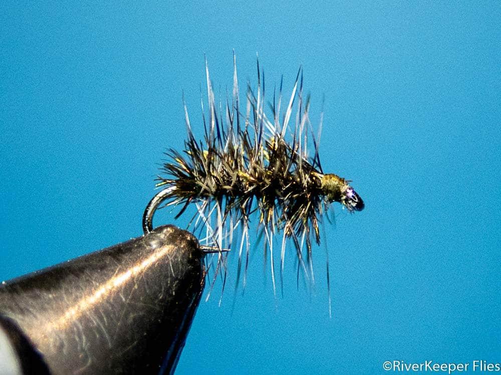 Griffiths Gnat | www.johnkreft.com