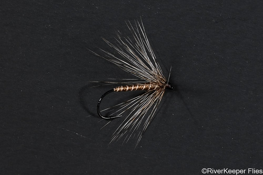 Astorga Manuscript - Fly 1   www.johnkreft.com
