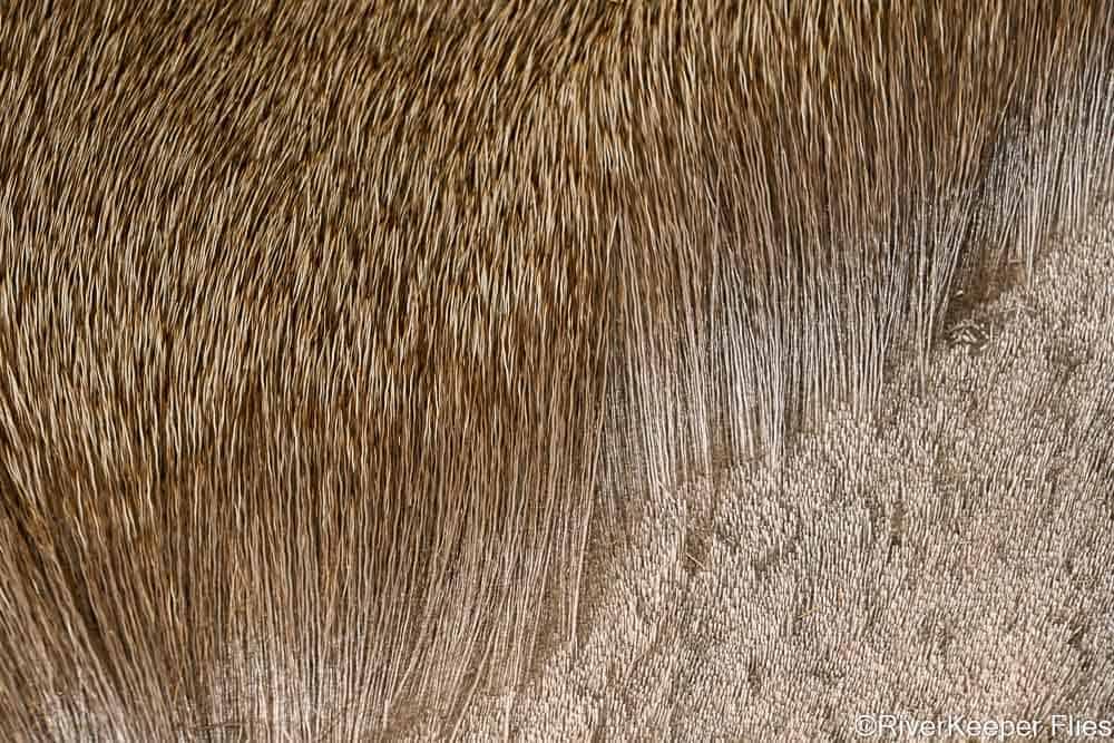 Stimulator Deer Hair | www.johnkreft.com